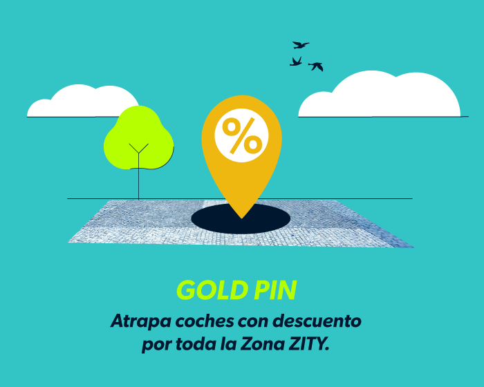 ZITY: Gold Pin